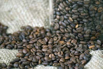 caffe grani tostato arabica